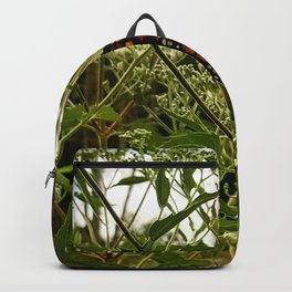 Feeding butterfly Backpack