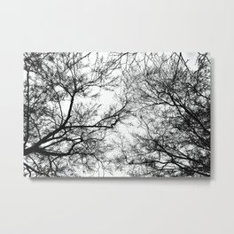 Tree Silhouette Series 7 Metal Print