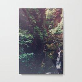 Waterfall Wilderness Metal Print