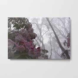 Rhododendron Mist Metal Print