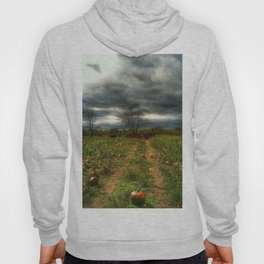 the pumpkin patch Hoody