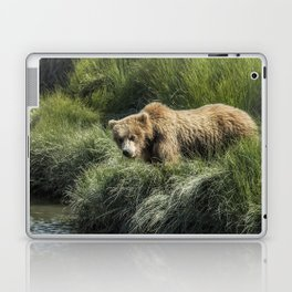 Munching Grass by the Stream Laptop & iPad Skin