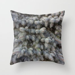 Blue Spruce tree Christmas favorite evergreen conifer grey blue green Throw Pillow