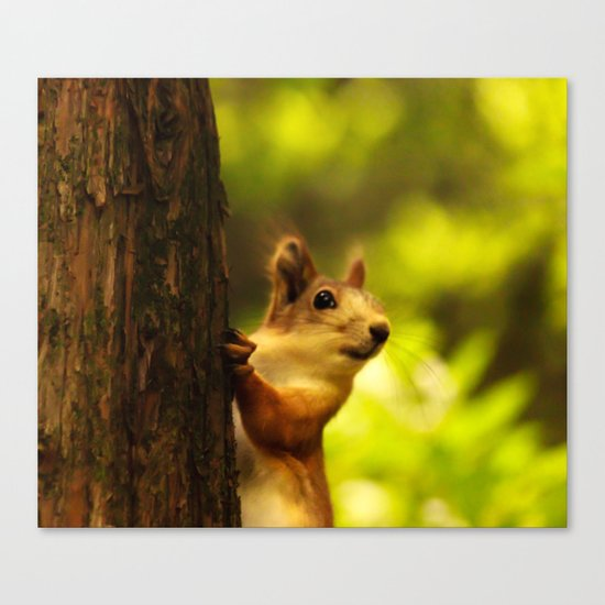 Did you say something? Canvas Print