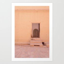 Jaipur Doorways Art Print