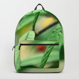 Red and green Backpack