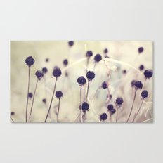 Charcoal stems Canvas Print