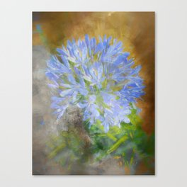 Agapanthus in Blue Canvas Print