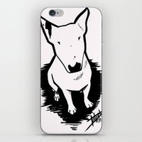 bull terrier iPhone & iPod Skins featuring bull terrier by sabrina.gennari