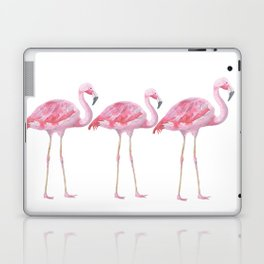Flamingo - Pink Bird - Animal On White Background Laptop & iPad Skin