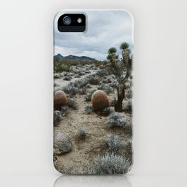 Mojave iPhone Case