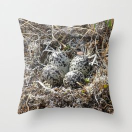 Bird Nest (Pacific Golden Plover) Throw Pillow