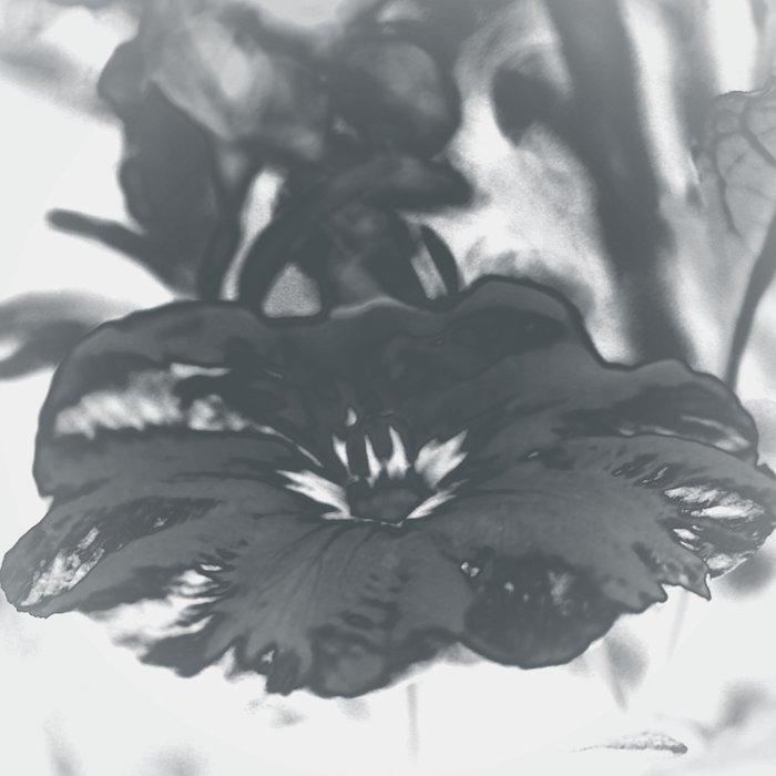 Bloom in Platinum Tone Duvet Cover