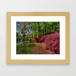 Magical Gardens Framed Art Print