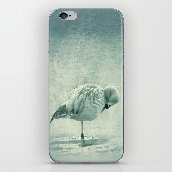Flamingo Blues iPhone & iPod Skin