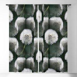 White Dandelion Blowballs Black Background #decor #society6 #buyart Blackout Curtain