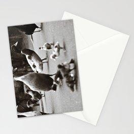 Quack Stationery Cards