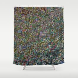 Amusement Shower Curtain