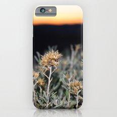 Sagebrush iPhone 6s Slim Case