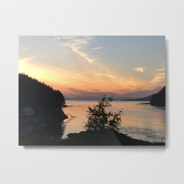 A view from Jim's Way Metal Print