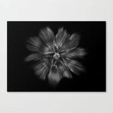 Backyard Flowers In Black And White 22 Flow Version Canvas Print