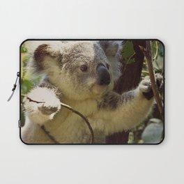 Sweet Koala Baby Laptop Sleeve