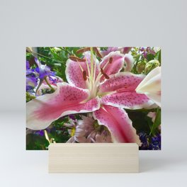 Lovely pink lily Mini Art Print