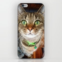 Green Eyed Meow iPhone Skin