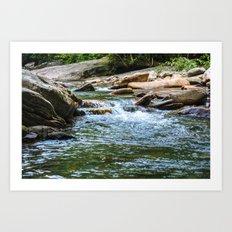 Tennessee Creek Art Print