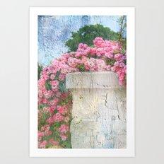 Cascade of Pink Roses Art Print