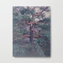 Botaniska Metal Print
