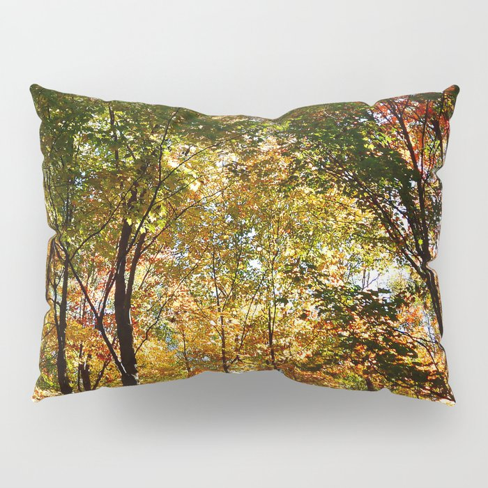 Through the Trees in October Pillow Sham
