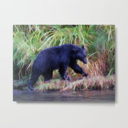 Call of the Salmon King - Fishing Black Bear Metal Print