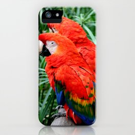 Scarlet Macaws iPhone Case
