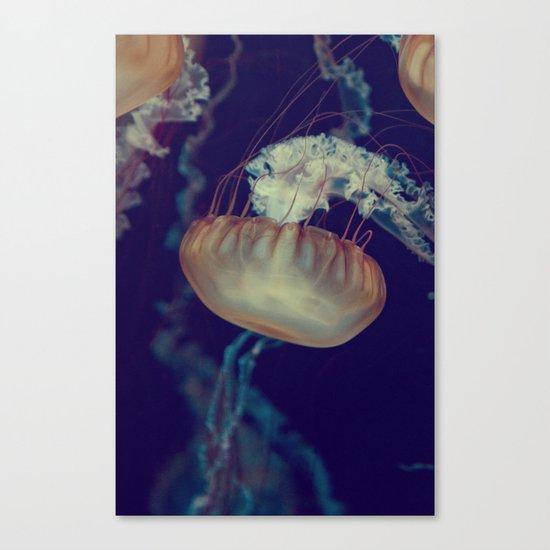 La méduse solitaire (3) Canvas Print