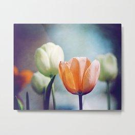 Orange Tulip Navy Blue Flower Photography, Coral Peach Floral Nature Metal Print