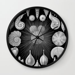 Black and White Shells - Beach Print Wall Clock