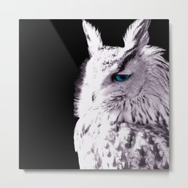 In sight of the owl  NEW VERSION!! Metal Print