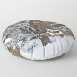 Keeping Things Way Cool Floor Pillow