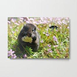Spring Hamster Metal Print