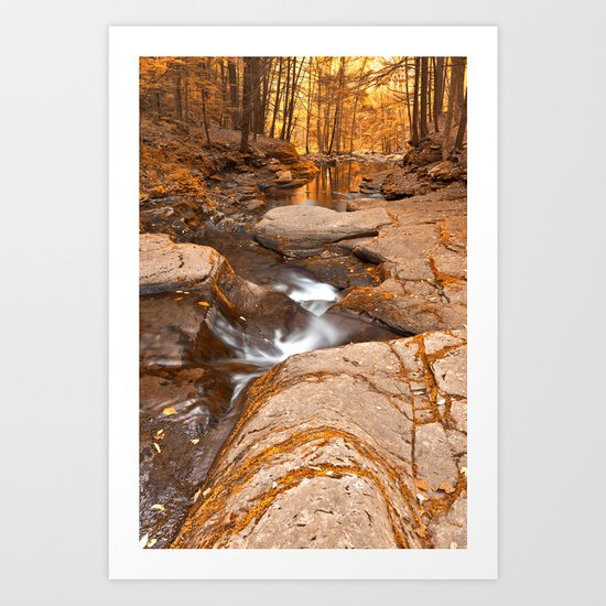 Worlds End Forest Stream - Gold Rapture Art Print