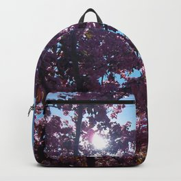 Sweet Creations Backpack