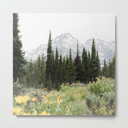 Grand Teton National Park Wildflower Adventure - Wanderlust Mountains Metal Print