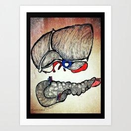 Liver and Pancreas Art Print