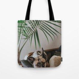 Dog by Jake Noren Tote Bag