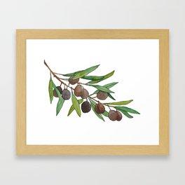 Olive leaf Framed Art Print