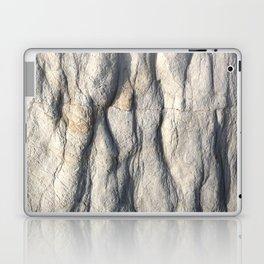 Rock Face Laptop & iPad Skin