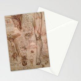 Anatomical Sketches - Leonardo Da Vinci Stationery Cards