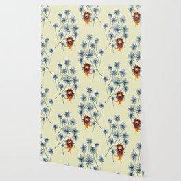 Lion on dandelion Wallpaper