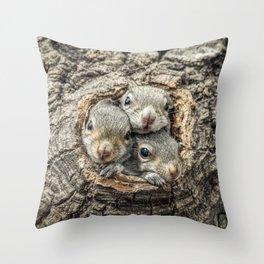 Peekaboo Baby Squirrels  Throw Pillow